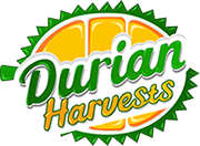 Durian Harvests